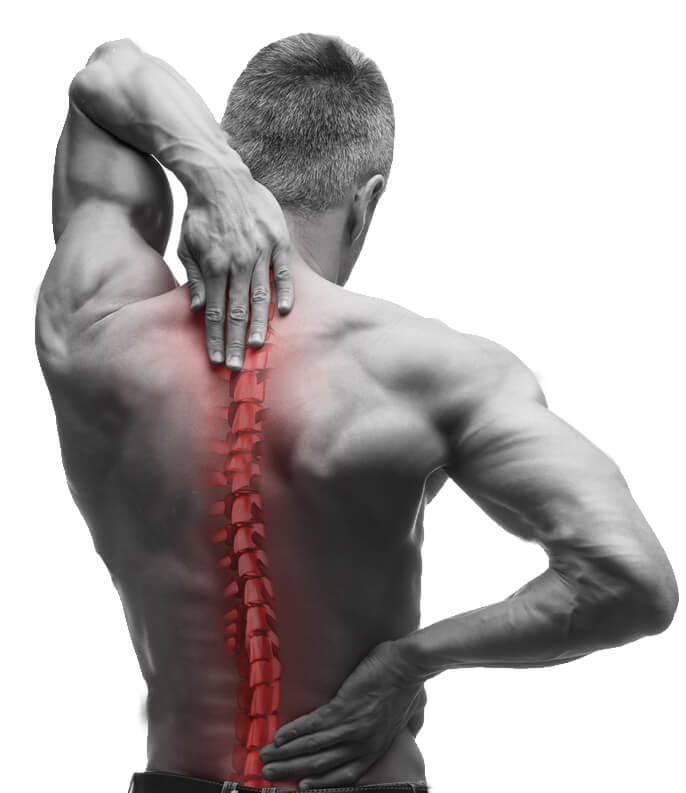 Camden Physiotherapy